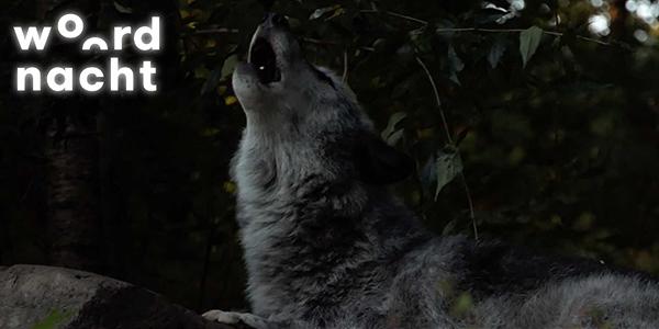 Woordnacht-2020-wolves